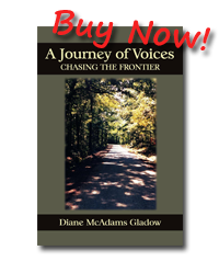 journey of voices buy now book