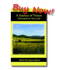 Journey of Voices book 2